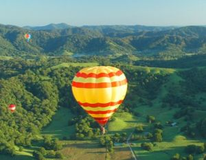 Byron Bay Ballooning - Winery Find