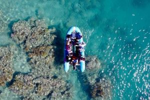 Glass-bottom boat tour with Whitehaven Beach - Winery Find